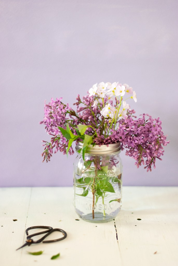 Edible flowers : Lilac