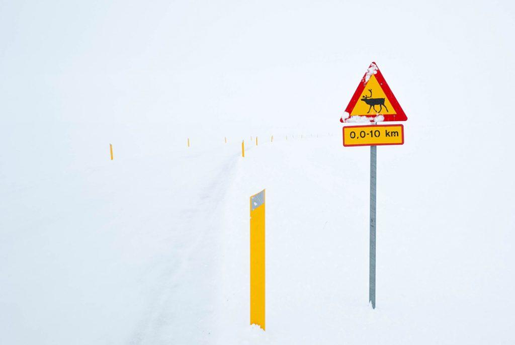 hautes terres Islande