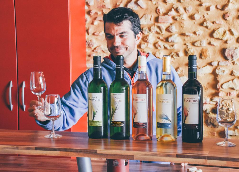 Leaf - Domaine de Fortunet - Vins des Côtes de Gascogne