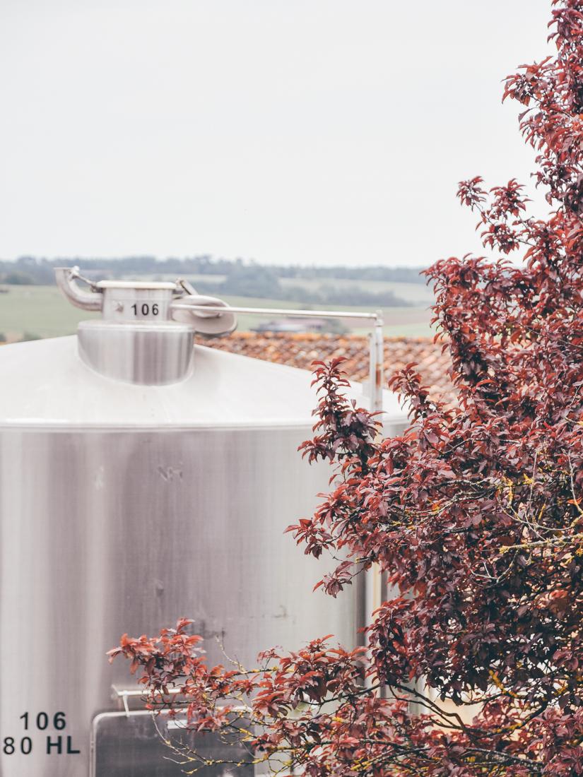 Leaf - Domaine de Pellehaut - Vins des Côtes de Gascogne