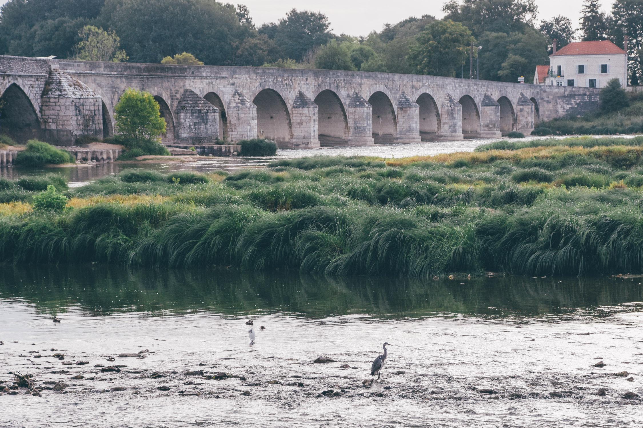Leaf • La Loire à vélo, de Blois à Orléans en passant par Meung-sur-Loire