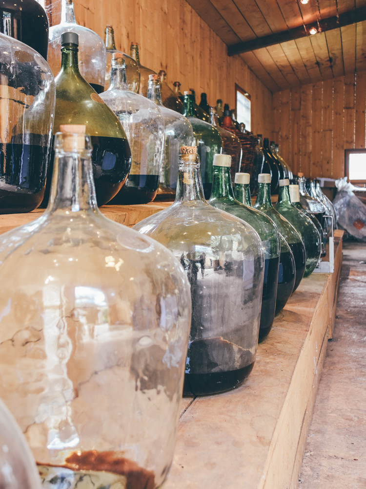 Leaf - Domaine de Joÿ - Vins des Côtes de Gascogne